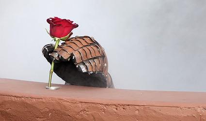 Rose Rueck09